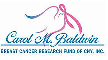carol baldwin breast cancer fund of CNY.
