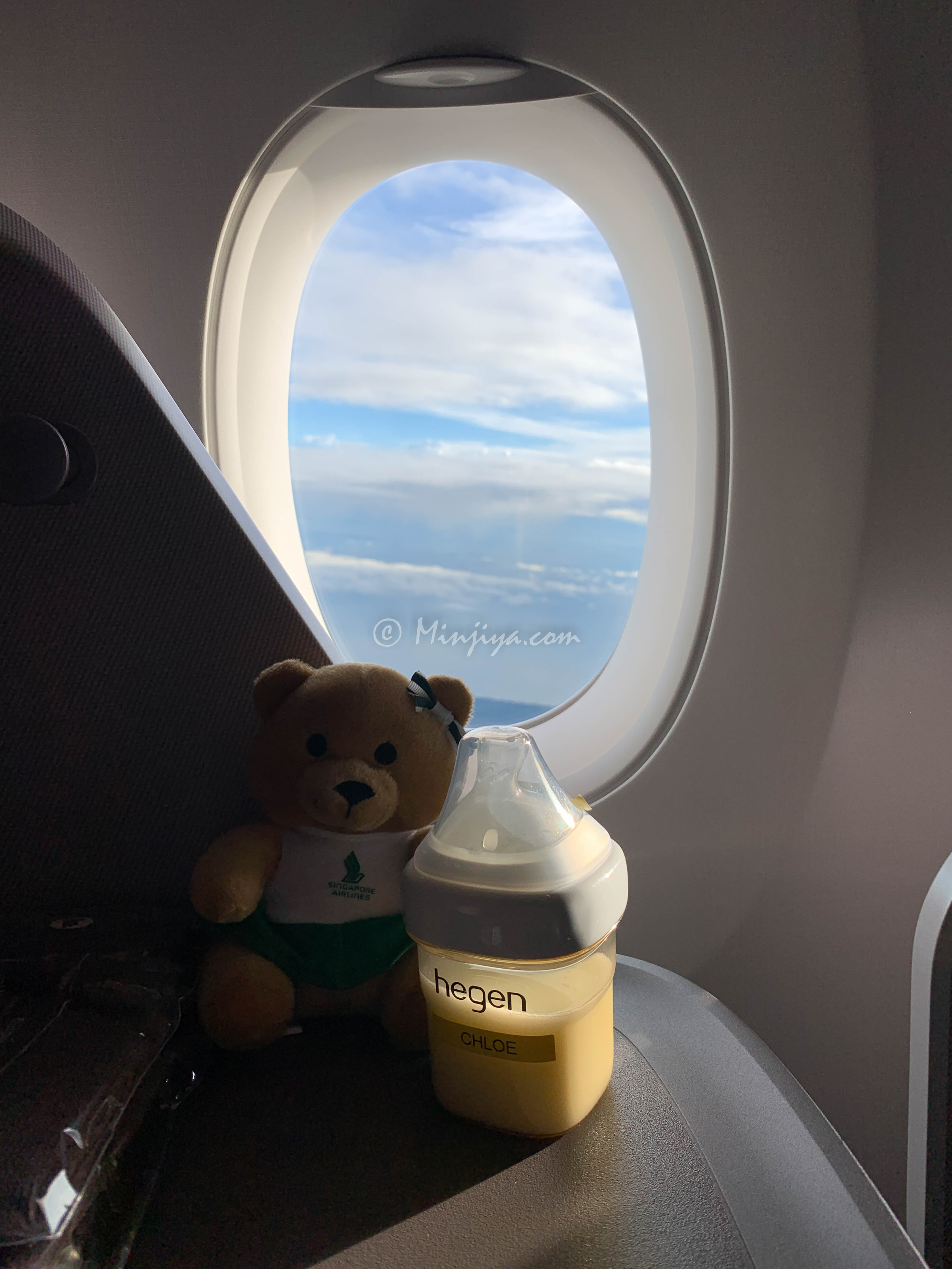 Singapore Airline Baby Toy