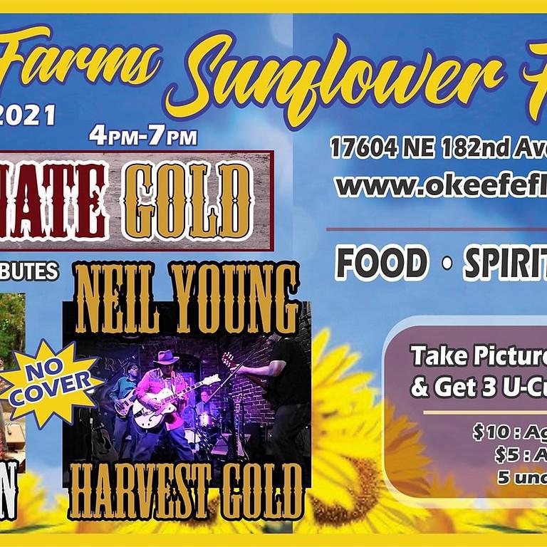 Sunflower Festival!