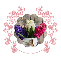 MIXED HYACINTHS CUP.png