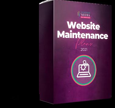 Website Maintenance-min.png