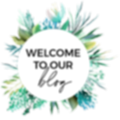 Welcome to our blog - Humbird Media