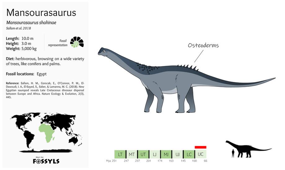 Mansourasaurus%20shahinae.png