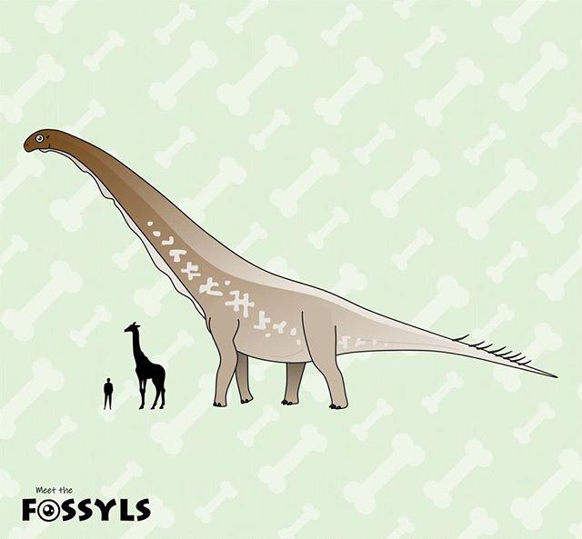 Dreadnoughtus size