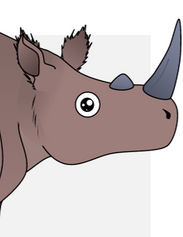 Narrow-nosed Rhinoceros