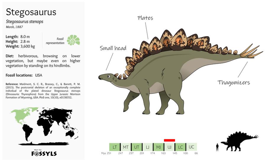Stegosaurus%20stenops.png