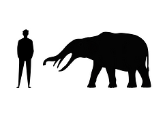 Size comparison extinct dinosaur animal megafauna