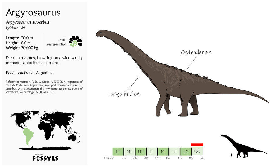 Argyrosaurus%20superbus.png