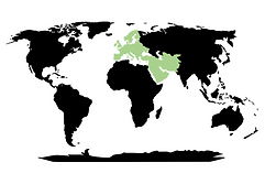 Extinct dinosaur animal megafauna distribution map