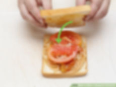 make sandwich use.jpg