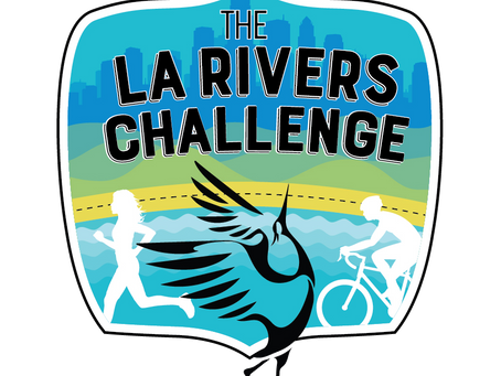 Earn the Badges. Complete the Challenge!