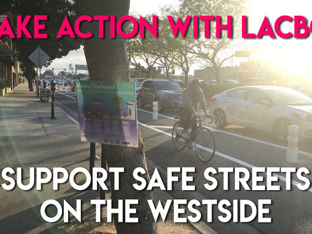 Action Alert: Save Venice Great Streets