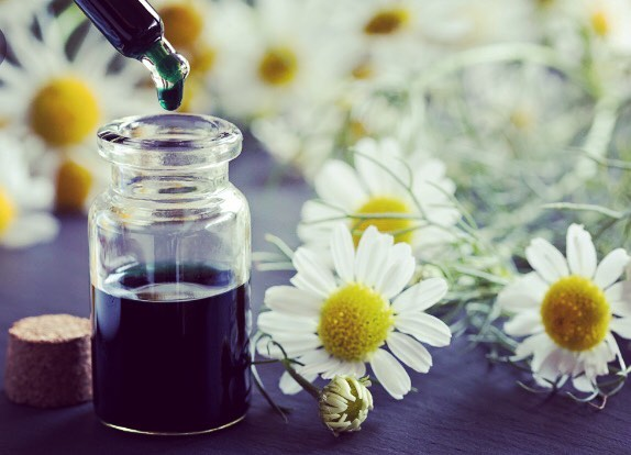 Blue chamomile essential oil has a higher chamazulene content…