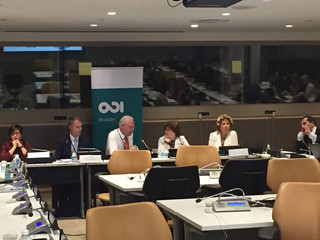 UN DPI/NGO civil-society panel (UN)