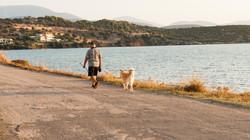 Βόλτα με το σκύλο στην παραλία Κουβέρτα