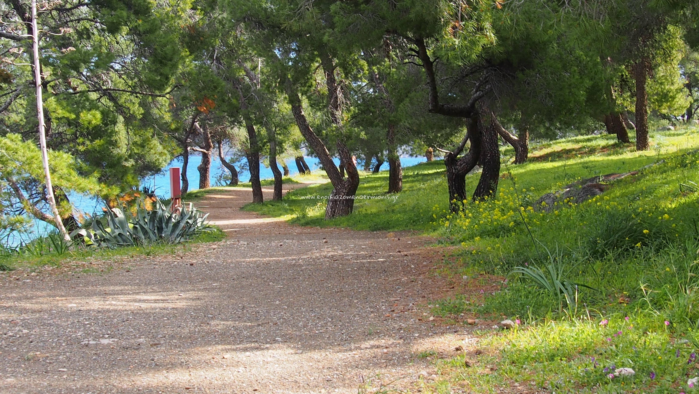 Περιμετρικός χωματόδρομος για βόλτα στο Μπίστι