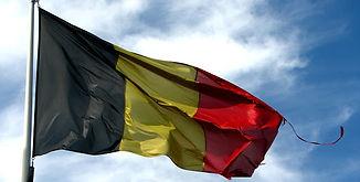 Le RIC reste à être écrit par les citoyens en Belgique