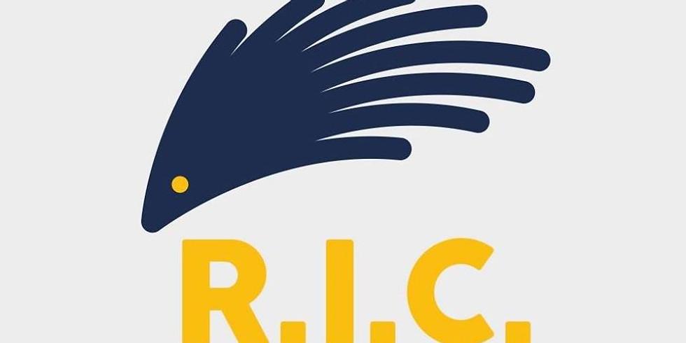 Vidéoconférence - Atelier de formation Référendum d'Initiative Citoyenne - RIC (1)