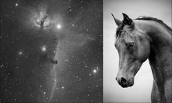 42-b33_18x10min_20130103_sdmask_DDP_horsehead