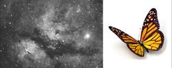 gamma_cygnus_6x2min_SDMask_20140826_DDP_butterfly
