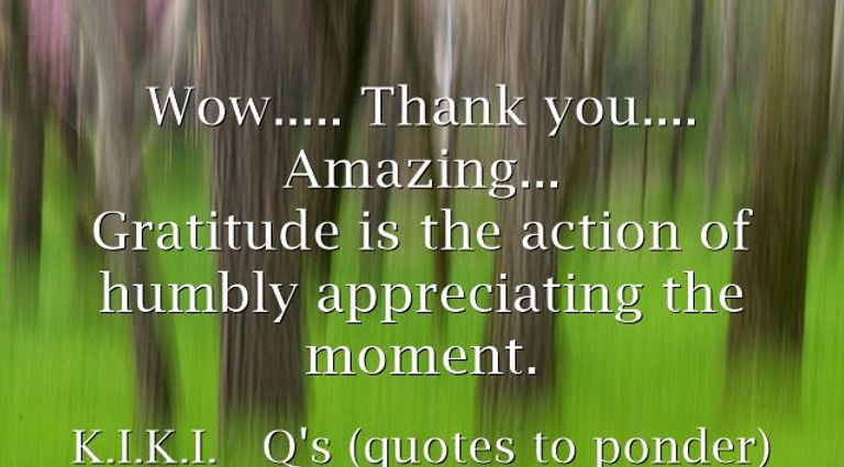 Wow..... Thank you.... Amazing... _Gratitude is the action of humbly appreciating the moment.  _ -K.