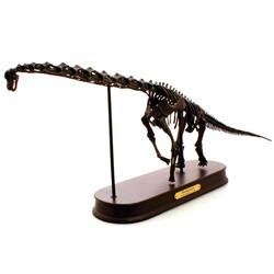 ブラキオサウルス スケルトン
