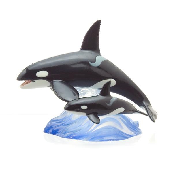 シャチ 親子遊泳