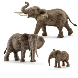 アフリカ象_2016