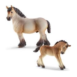 アルデンネ馬