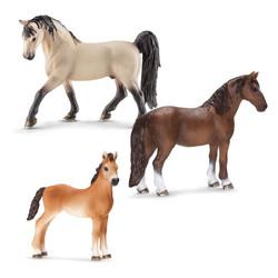 テネシーウォーカー馬