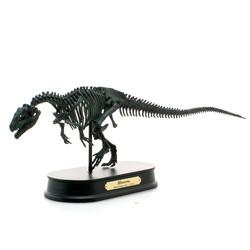 アロサウルス スケルトン