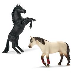 ムスタング・訓練馬