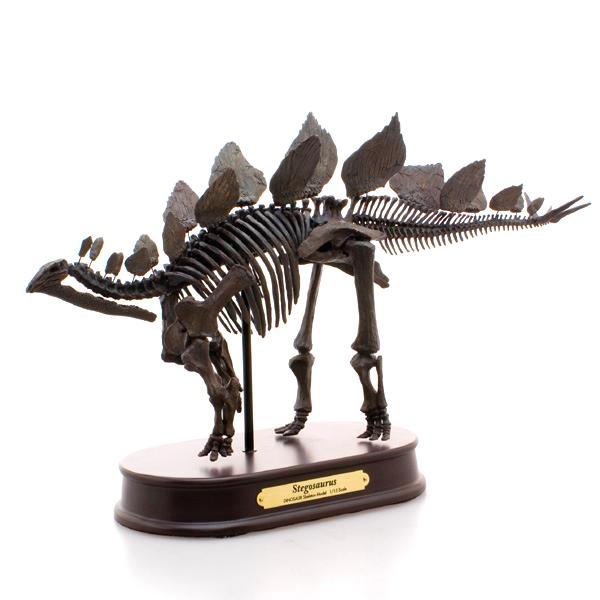 ステゴサウルス スケルトン