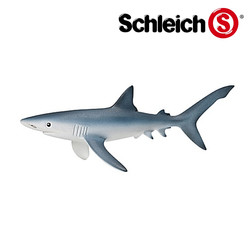 ヨシキリザメ