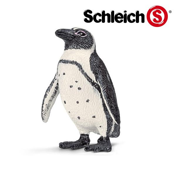 アフリカペンギン