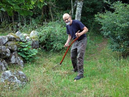 Rapport: Naturvårdsarbete Vannaröd