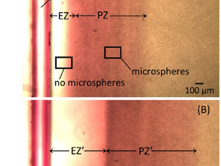 Effect of infrared radiation on interfacial water at hydrophilic surfaces