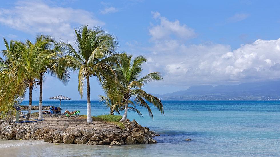 beach-4069345.jpg