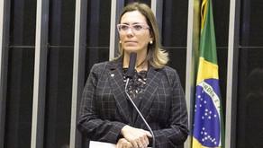 Rosana Valle pede a ministro informações sobre destino do ramal ferroviário Santos-Cajati