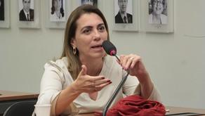 Rosana Valle pede à bancada paulista R$ 3 milhões para defesa da bananicultura no Vale