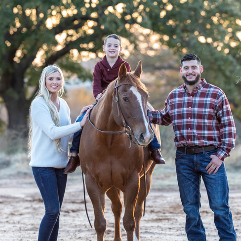 Every Family Needs a Horse