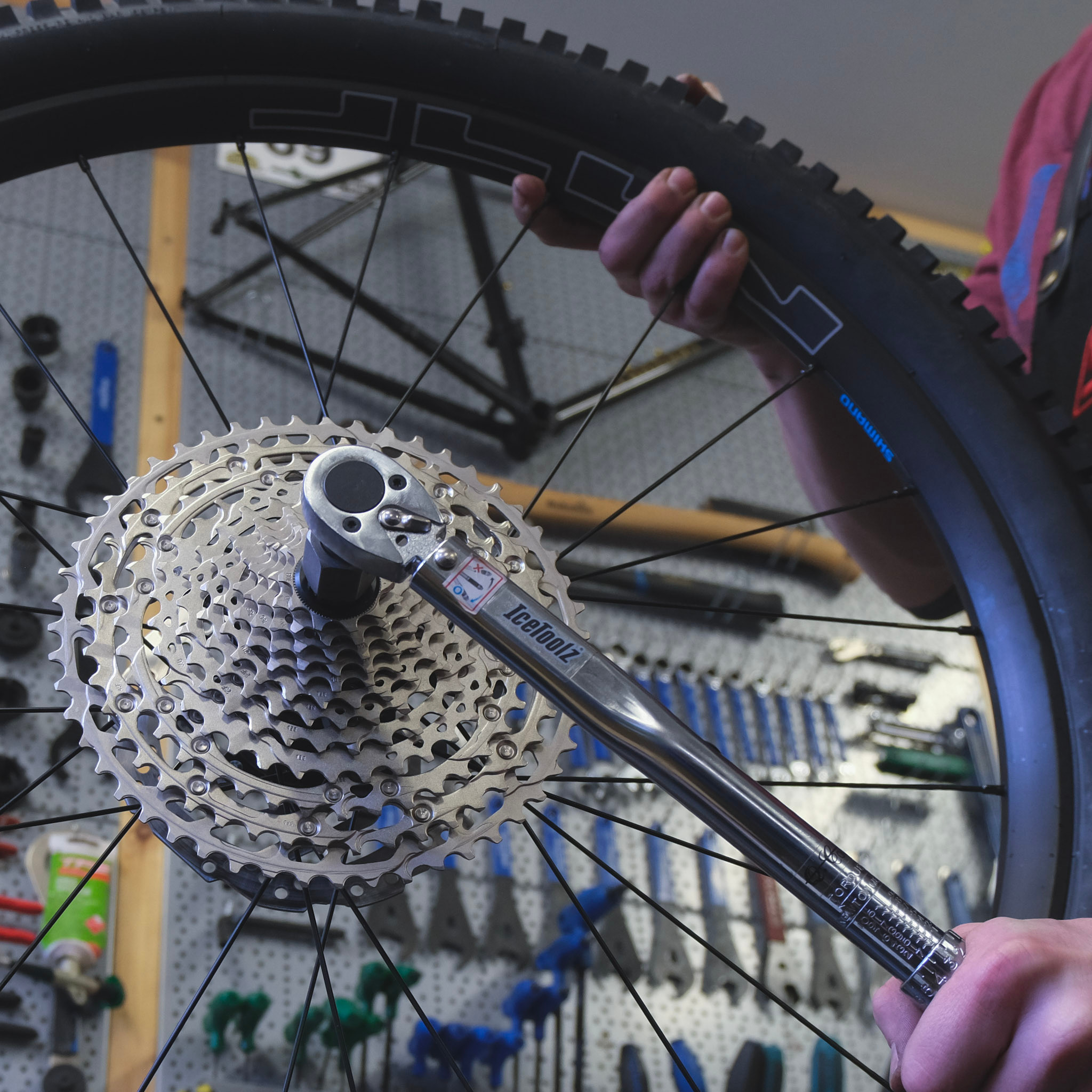 Cassette and chain replacement