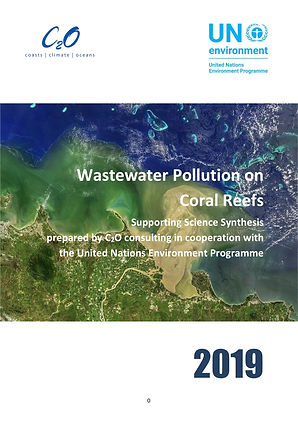 Pollution and Coral Reefs_UNEP 2019 cove