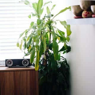 hubbardphotography_shelby00037.JPG