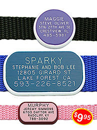 front_collar-tags3_p_1_.jpg