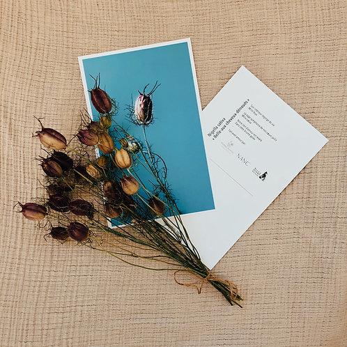 Petit bouquet séché de la Ferme Pastel et carte de souhaits de Nancy Guignard