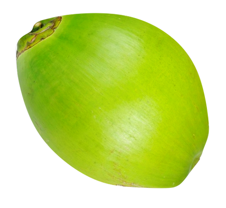 cconut.png