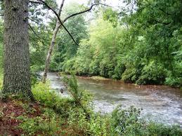 chattahoochee river.jpg