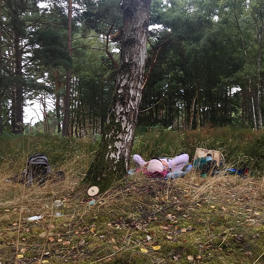 Wild Yoga and Birch Tree Talk