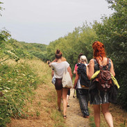 Wildflower walk to the ocean (c). Lisa Chapman